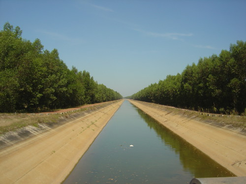 Irrigation channel through the forest
