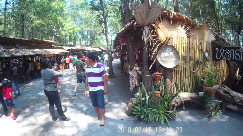 Market in the forest
